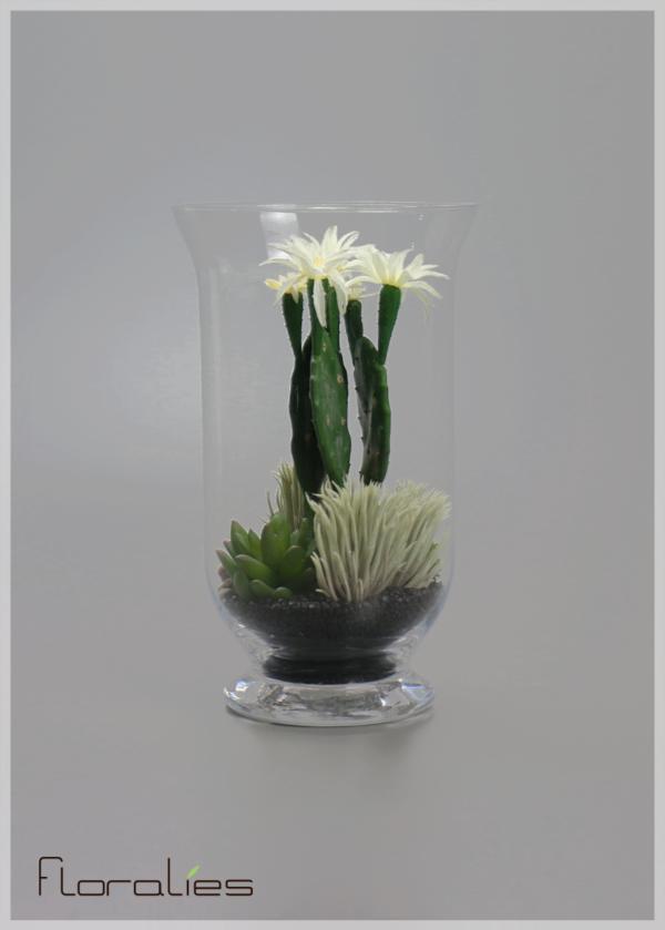 Terrarium cactus fleuris 1