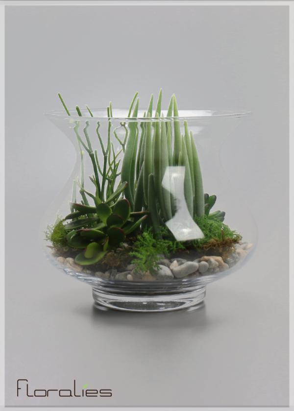 terrarium plantes grasses floralies. Black Bedroom Furniture Sets. Home Design Ideas