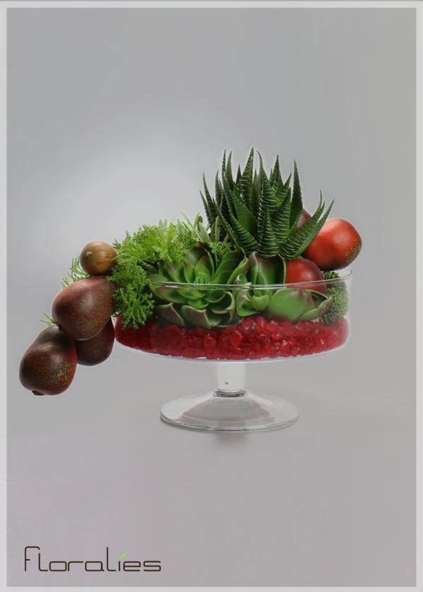 Terrarium d'asparagus