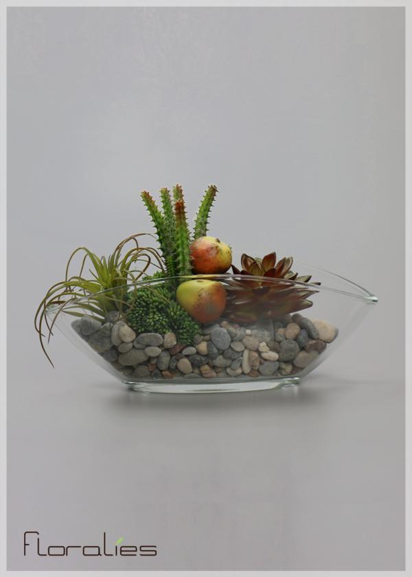 Terrarium cactus et poires