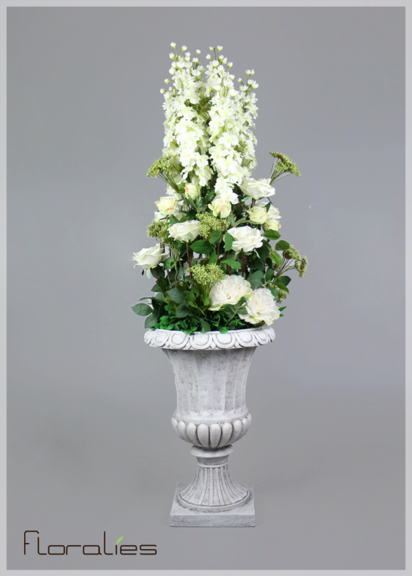Delphinium blanc