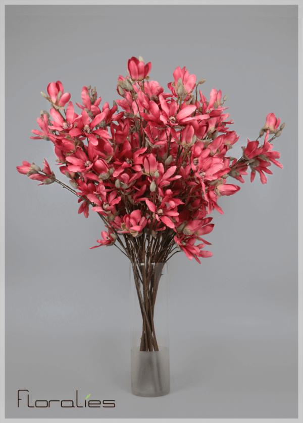 La  magnolia corail