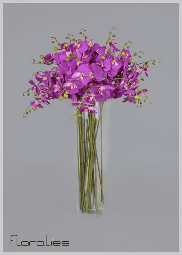 L'orchidée violette