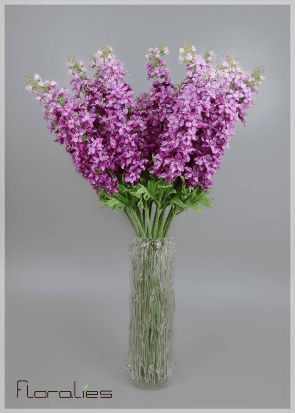Delphinium mauve