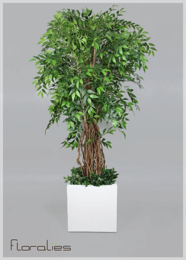 Ficus liana artificiel